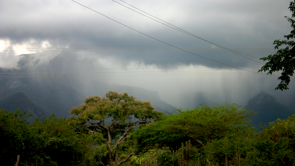 Downpour in the Nilgiris