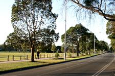 Princes Park Drive