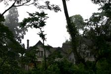 Tashiding Lodge