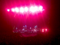 Linkin Park - Red Glare