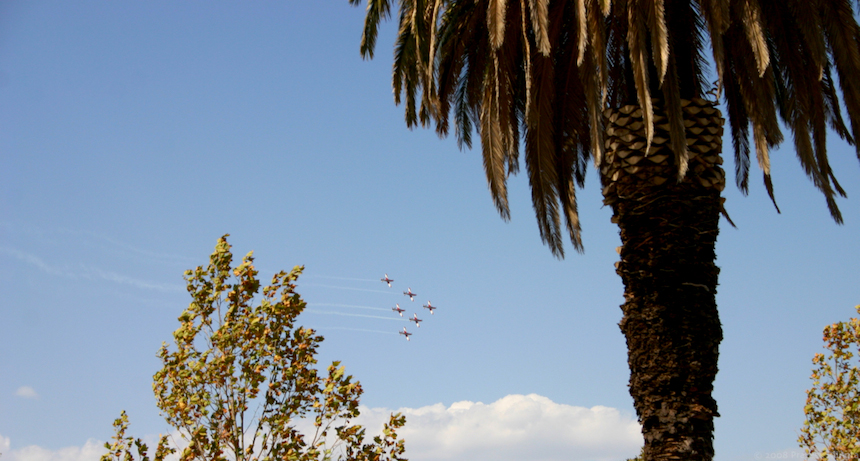 Roulettes between trees